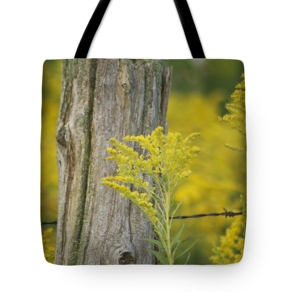 Landscape Tote Bag featuring the photograph Fence Post by Michael Peychich