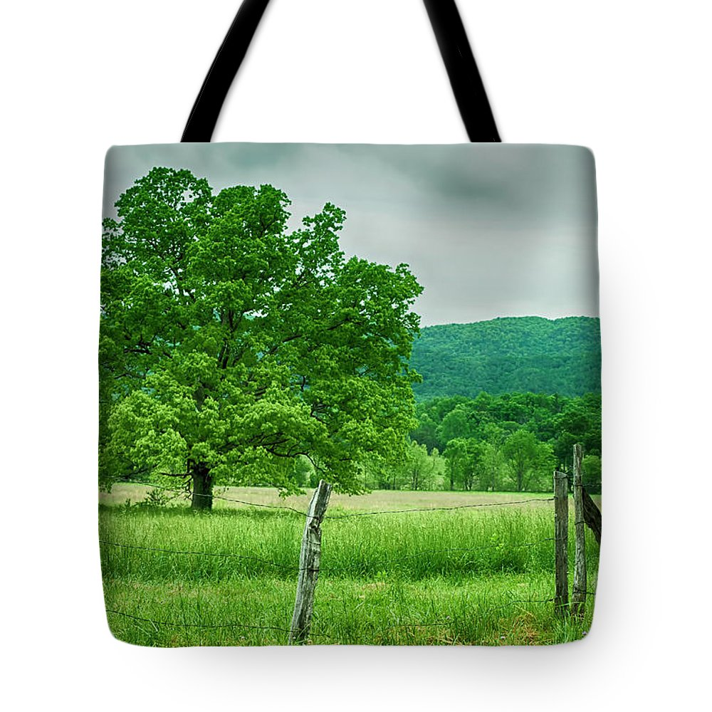 Forest Tote Bag featuring the photograph Fence Row And Tree by Barbara Rabek