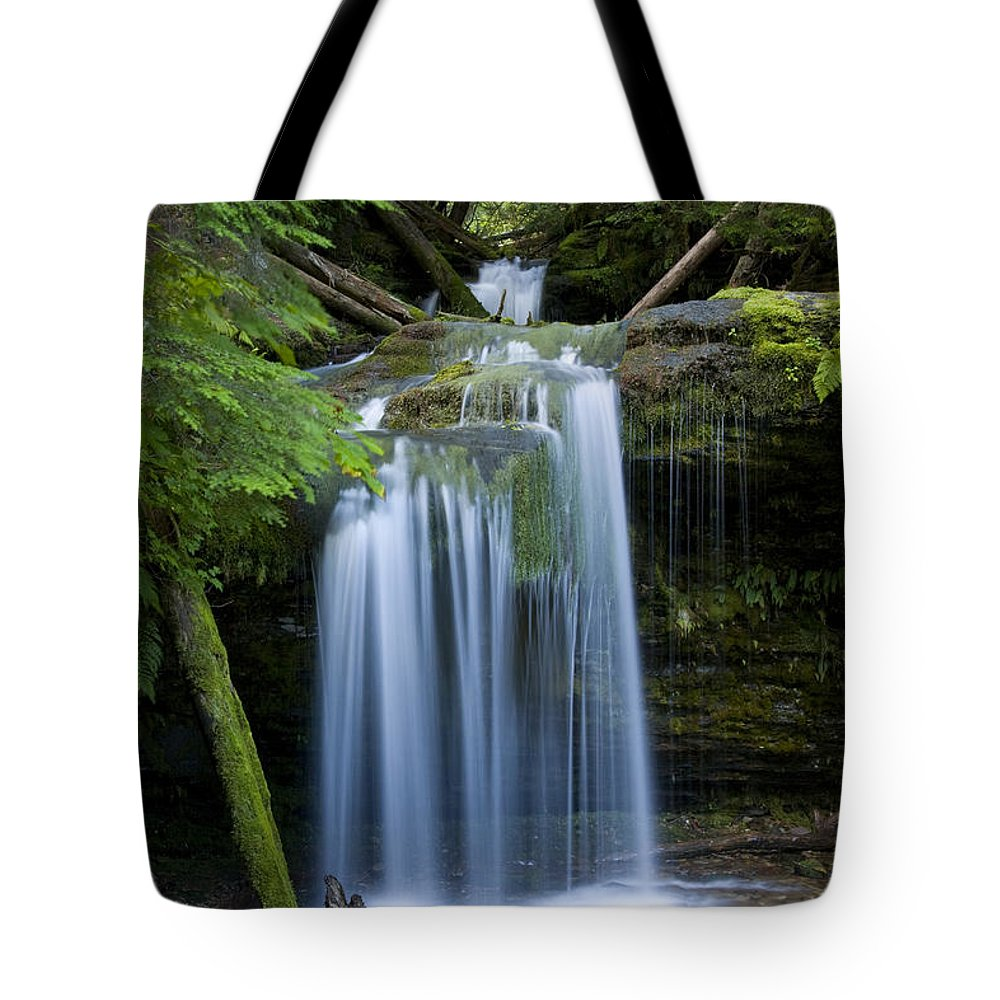 Waterfalls Tote Bag featuring the photograph Fern Falls by Idaho Scenic Images Linda Lantzy