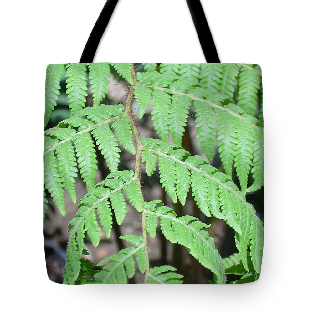 Fern Tote Bag featuring the photograph Fern by Torie Beck