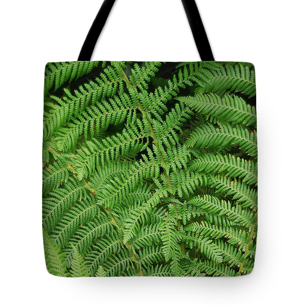 Fern Tote Bag featuring the photograph Ferns Au Naturale by Suzanne Gaff
