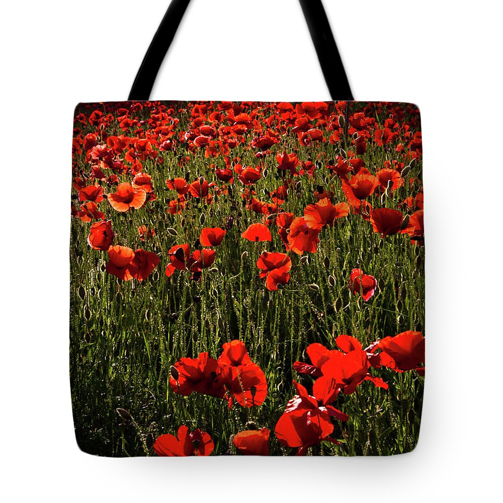 Poppies Tote Bag featuring the photograph Field Of Poppies by Roger Mullenhour