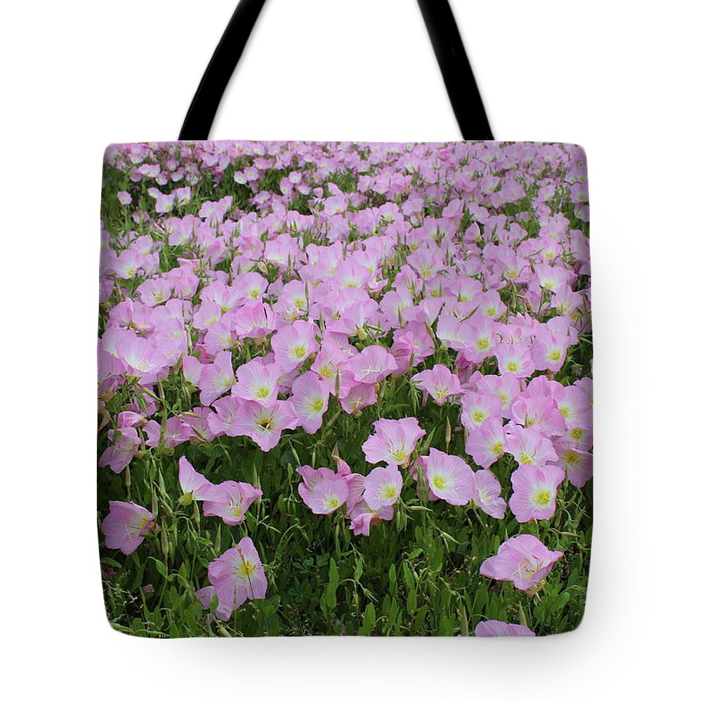 Flowers Tote Bag featuring the photograph Field Of Primrose by Cheryl Kostanesky