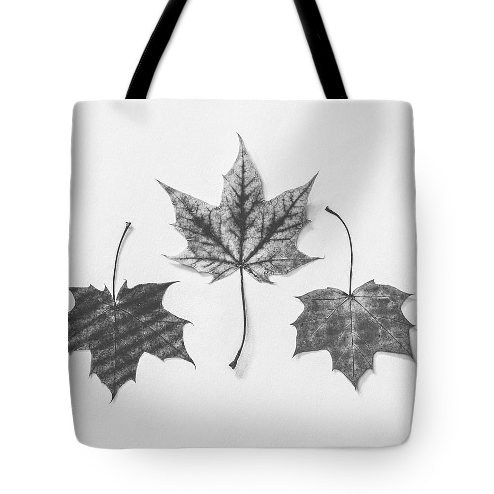 Autumn Art Tote Bag featuring the photograph Fiery Beauty In Monochrome by Kate Morton