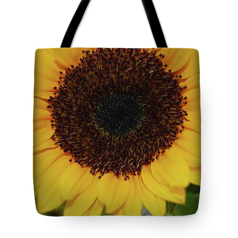 Sun Tote Bag featuring the photograph Fiery Bloom by JAMART Photography