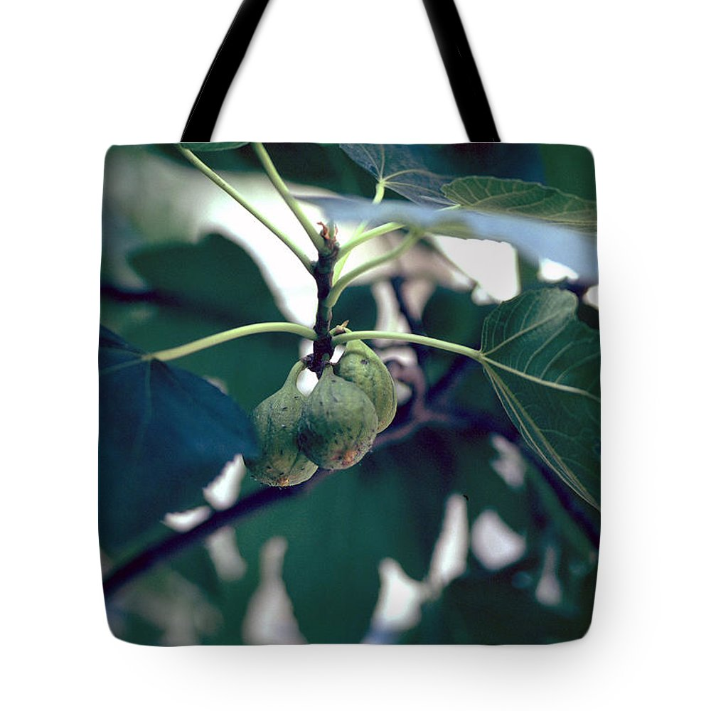 Fig Tote Bag featuring the photograph Fig by Flavia Westerwelle