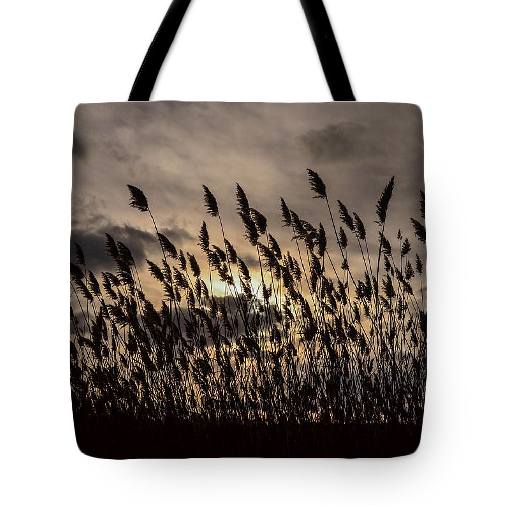 Clouds Tote Bag featuring the photograph Filtered Light by Robert Coffey