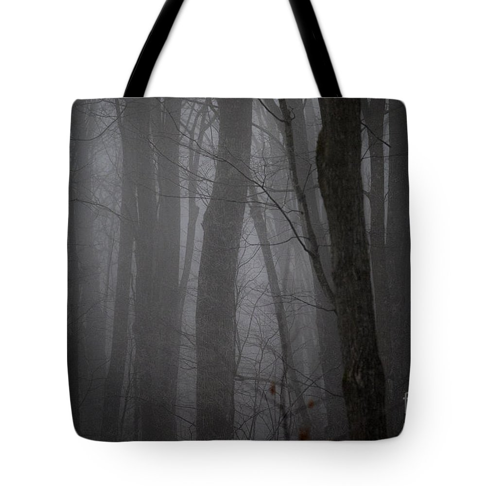Tote Bag featuring the photograph Find The Light. Always by Angie Rea