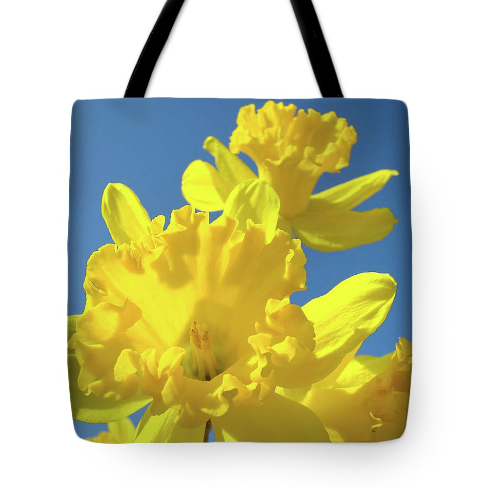 Sky Tote Bag featuring the photograph Fine Art Daffodils Floral Spring Flowers Art Prints Canvas Baslee Troutman by Baslee Troutman