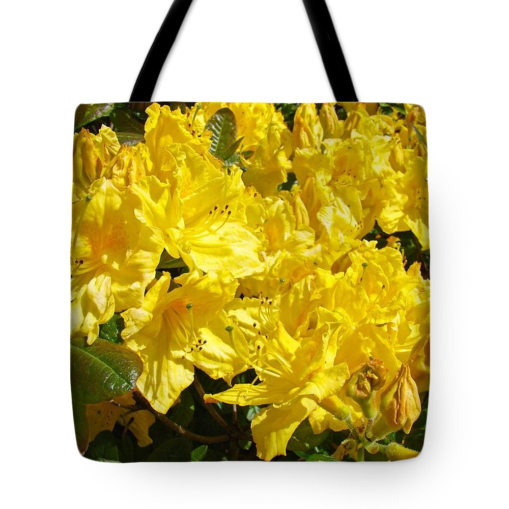 Rhodies Tote Bag featuring the photograph Fine Art Prints Yellow Rhodies Floral Garden Baslee Troutman by Baslee Troutman