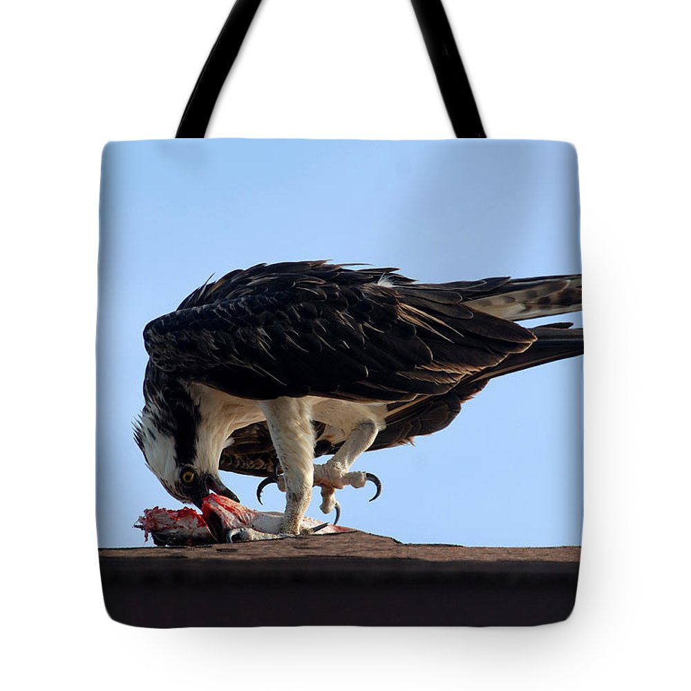 Osprey Tote Bag featuring the photograph Fine Dinning by David Lee Thompson