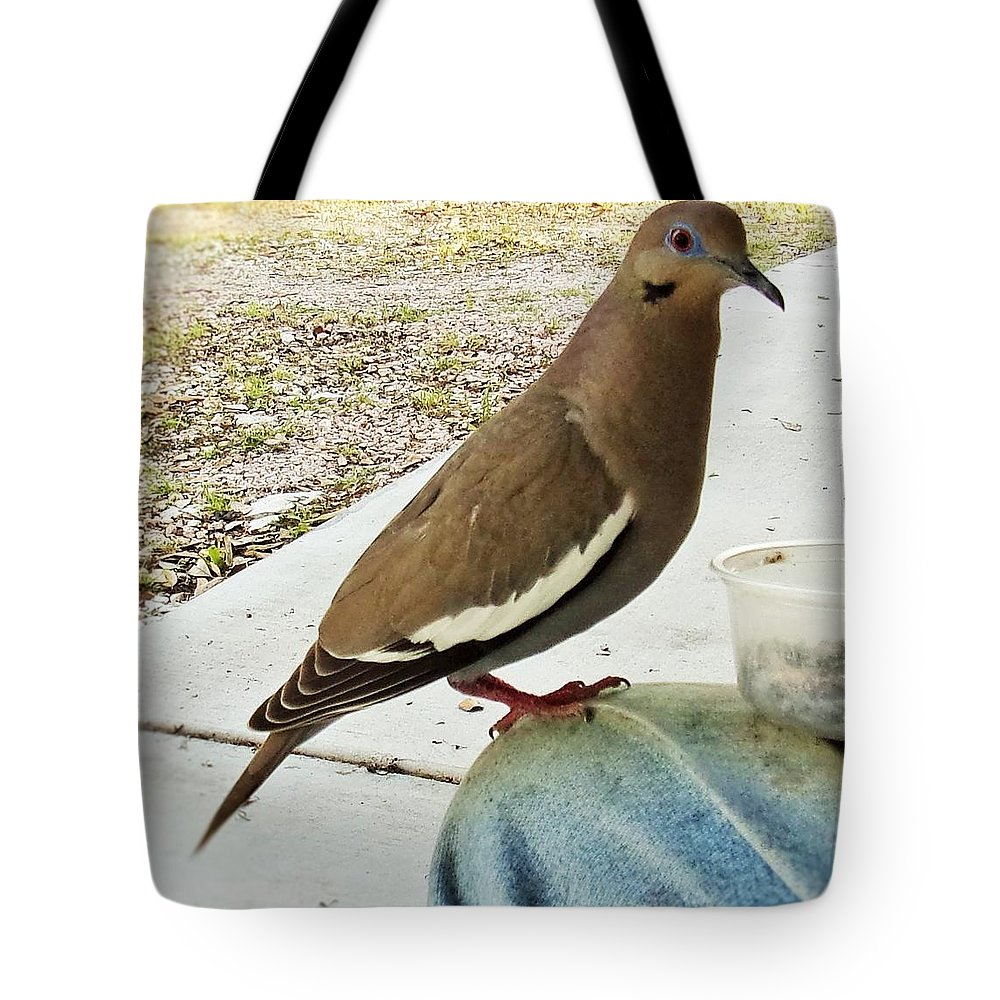 White Wing Dove Tote Bag featuring the photograph Finish Your Seeds And We'll Go Flying by Michael Dillon
