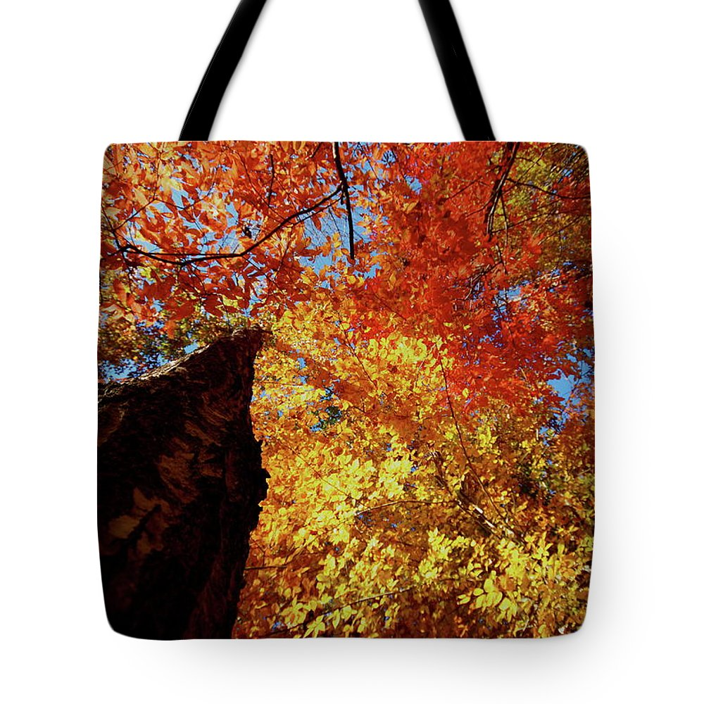 Fire Tote Bag featuring the photograph Fall Fire by Tom Nix