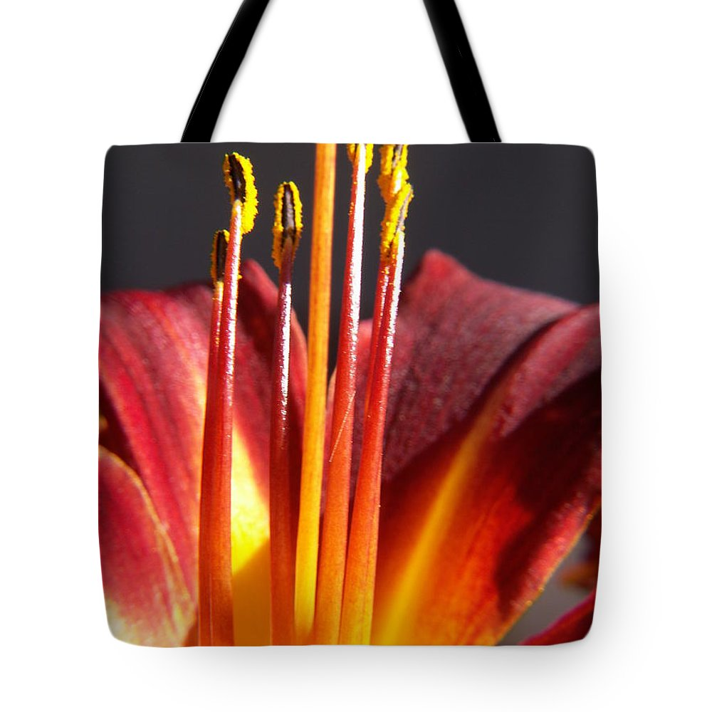 Fire Lily Tote Bag featuring the photograph Fire Lily by Amy Fose