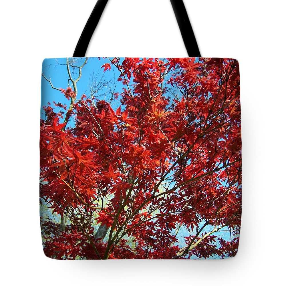 Red Tote Bag featuring the photograph Fire Tree I by Jai Johnson
