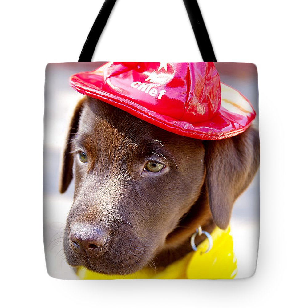 Dog Tote Bag featuring the photograph Firefighter Pup by Toni Hopper