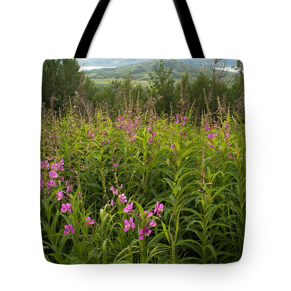 Landscape Tote Bag featuring the photograph Fireweed by Amanda Kiplinger