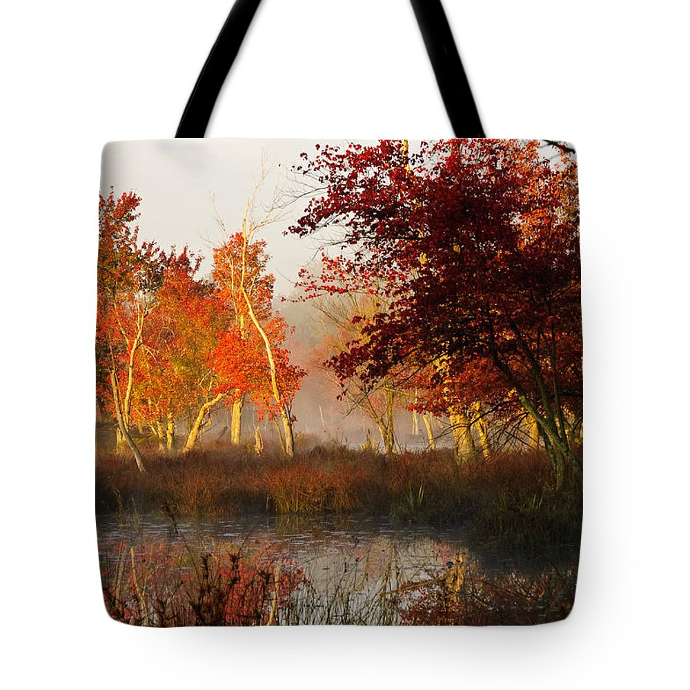 Landscape Tote Bag featuring the photograph First Light At The Pine Barrens by Louis Dallara