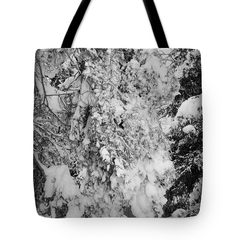 Snow Tote Bag featuring the photograph First Snowfall by Kathleen Struckle
