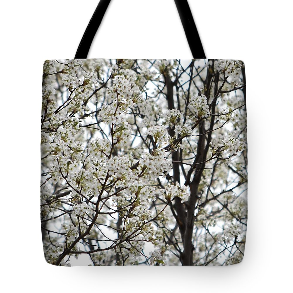 Flowering Tree Tote Bag featuring the photograph First Spring Blossom by Linda Benoit