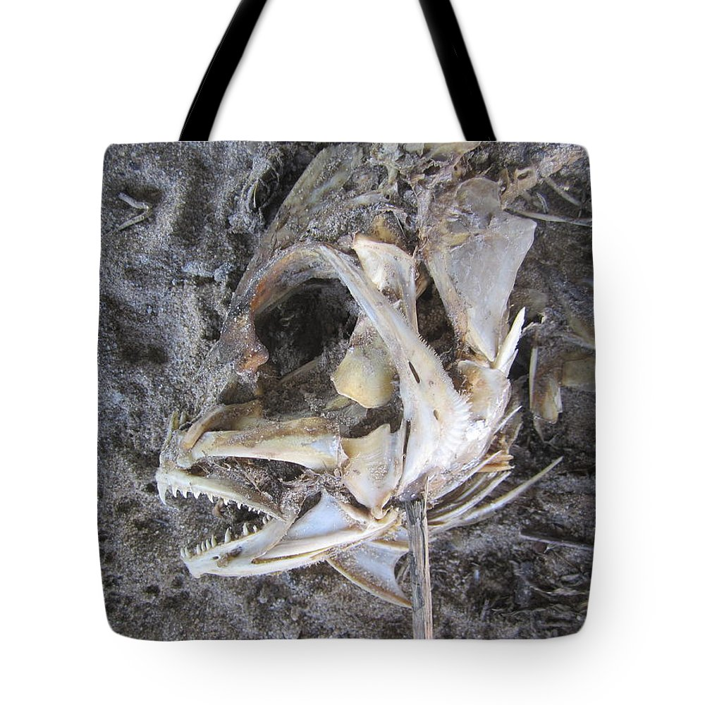 Fish Tote Bag featuring the photograph Fish Bones by Jim Clark