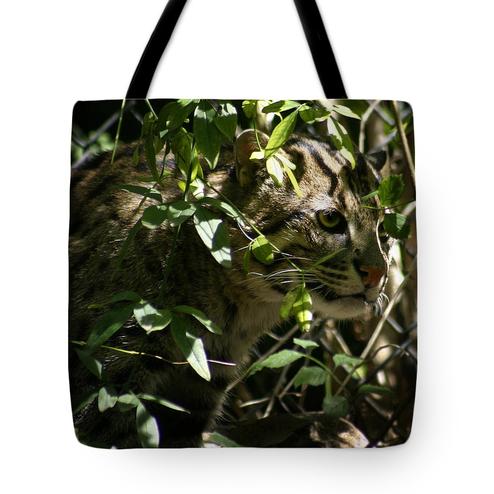 Fishing Cat Tote Bag featuring the photograph Fishing Cat by Anthony Jones