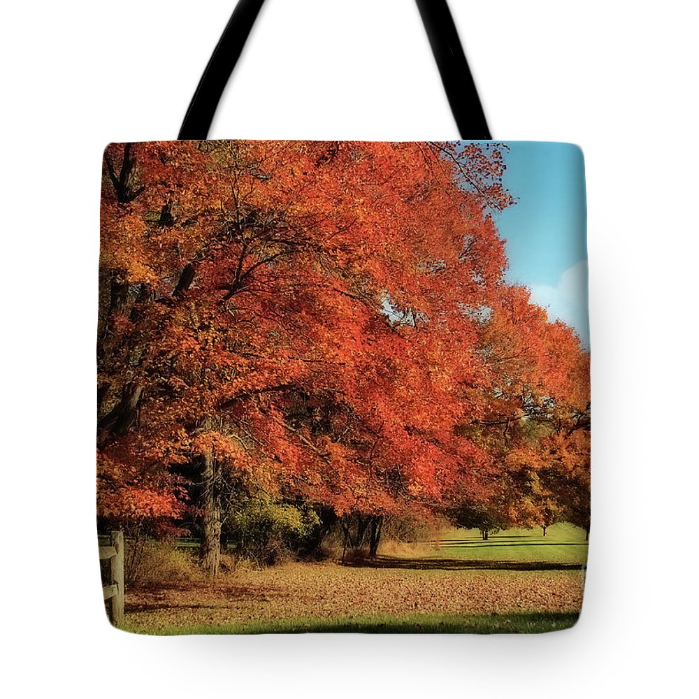 Autumn Tote Bag featuring the photograph Flame Trees by Lois Bryan