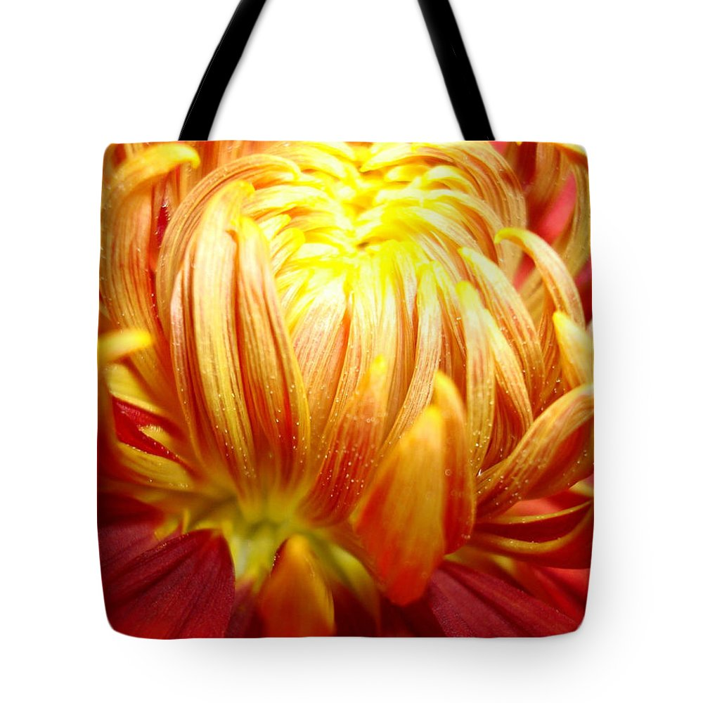 Floral Artwork Tote Bag featuring the photograph Flaming by Kathy Bucari