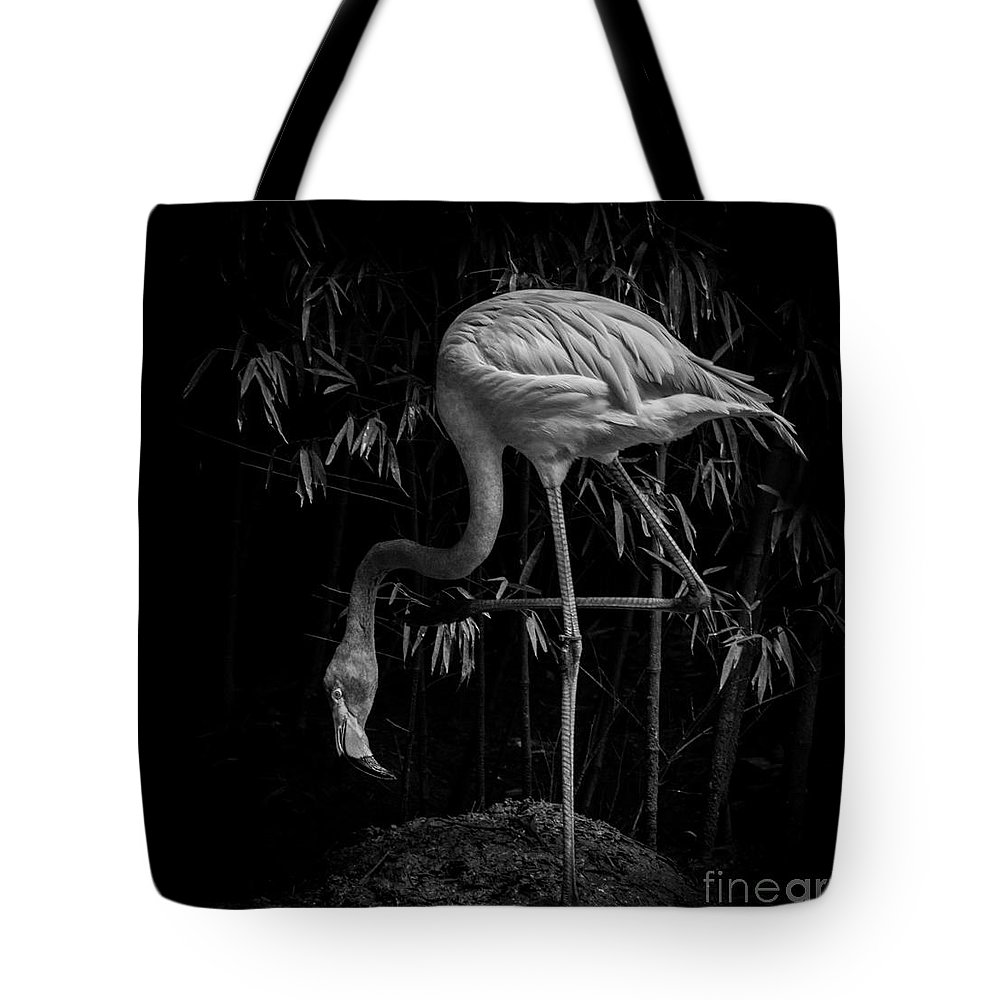 Flamingo Tote Bag featuring the photograph Flamingo Classic Bw by Toma Caul