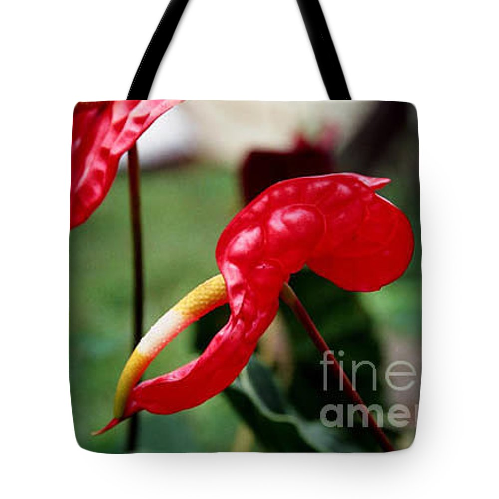 Exotic Flowers Tote Bag featuring the photograph Flamingo Flower by Kathy McClure