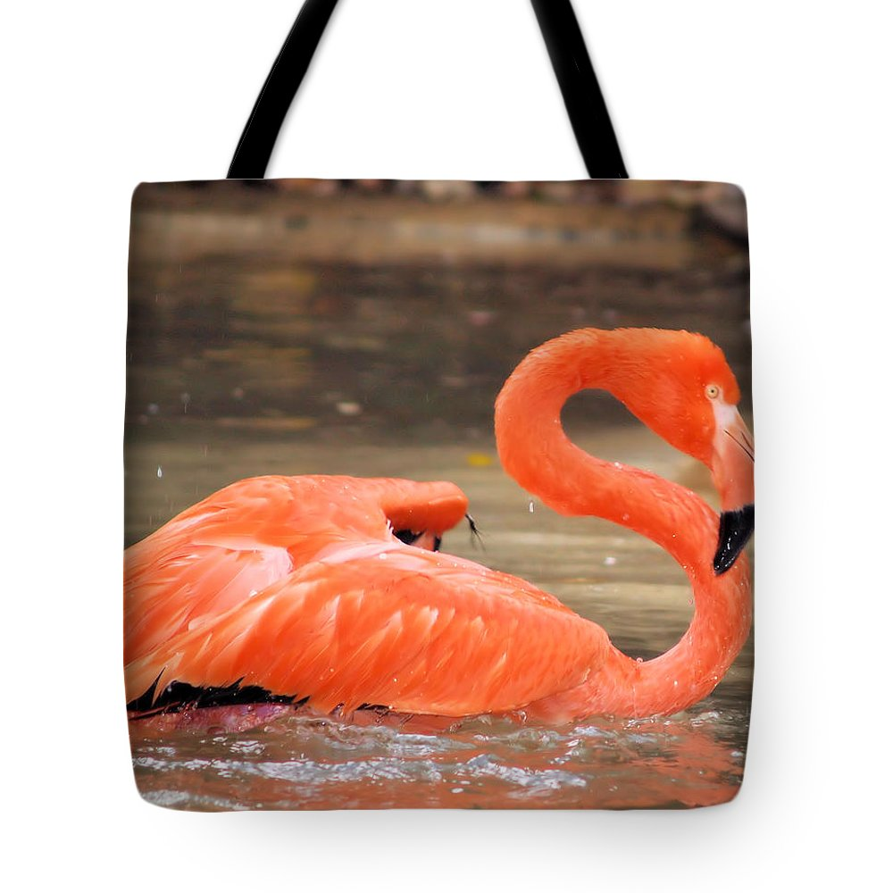 Flamingo Tote Bag featuring the photograph Flamingo by Gaby Swanson