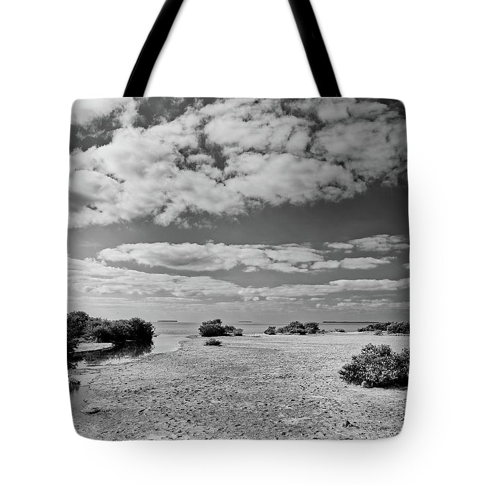 Bay Tote Bag featuring the photograph Flamingo Point by Rudy Umans