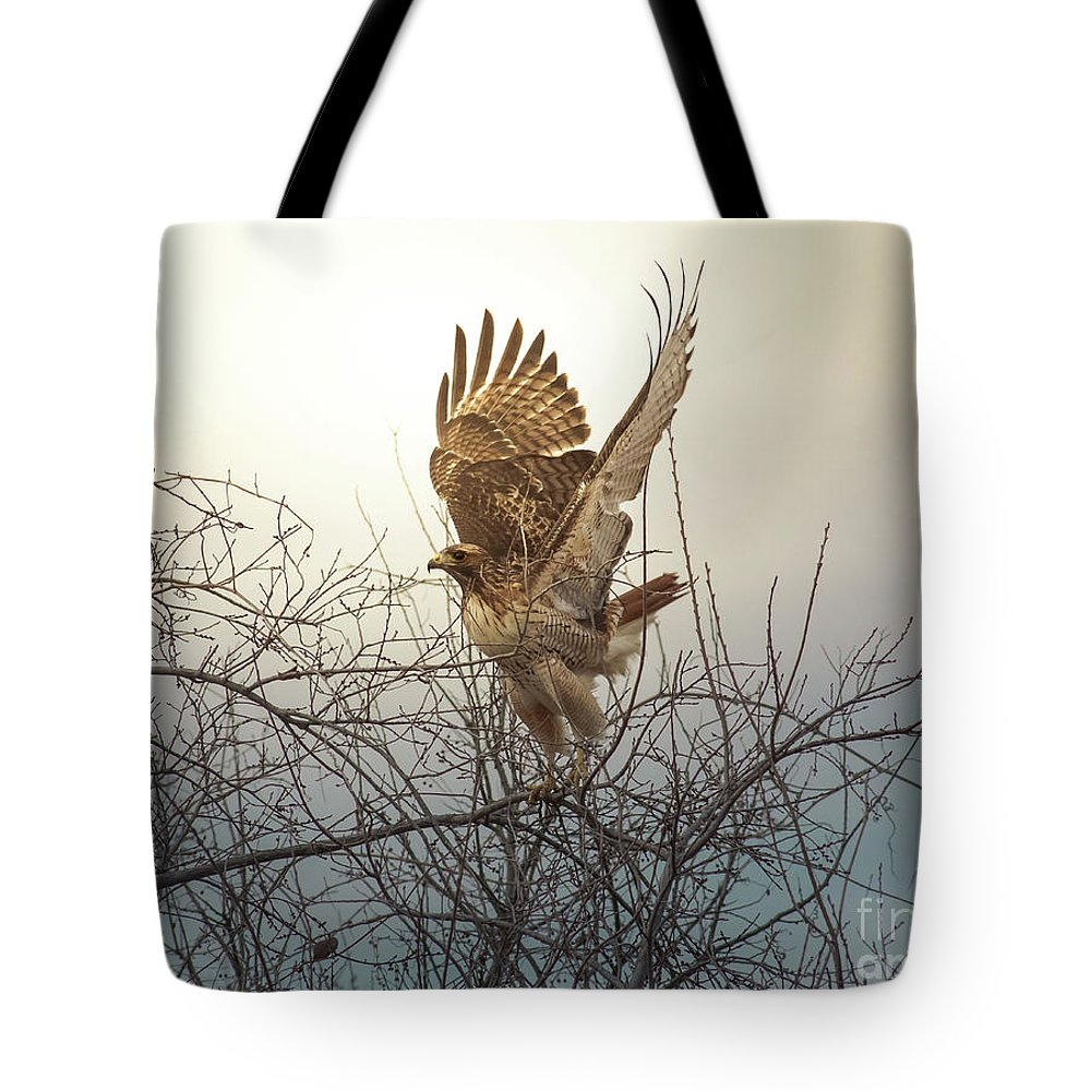 Animal Tote Bag featuring the photograph Flashing The Truckers by Robert Frederick