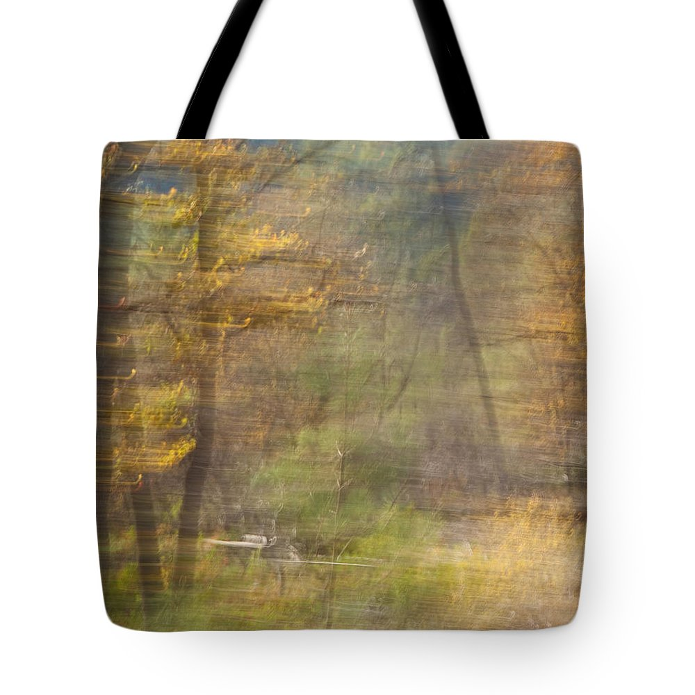 Autumn Tote Bag featuring the photograph Fleeting Autumn by Denise Dethlefsen