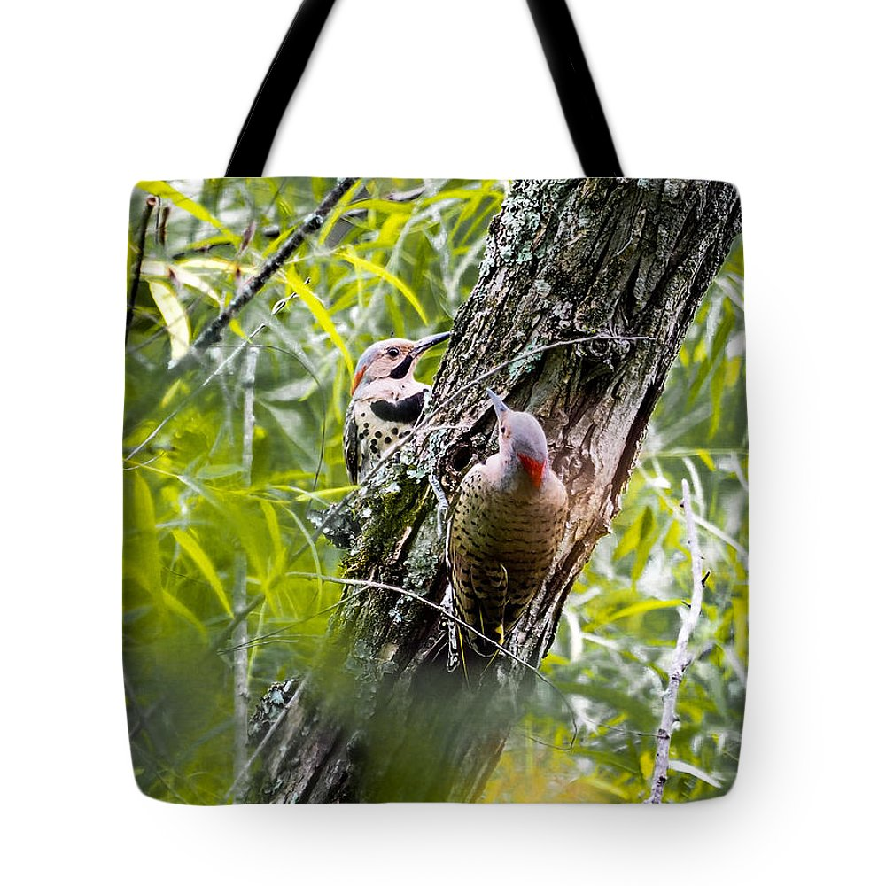 Yellow-shafted Flicker Tote Bag featuring the photograph Flicker Antics by Paula Ponath