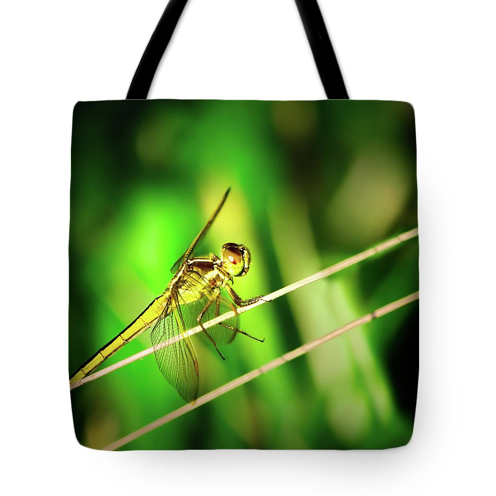 Dragonfly Tote Bag featuring the photograph Flight Clearance by Mark Andrew Thomas