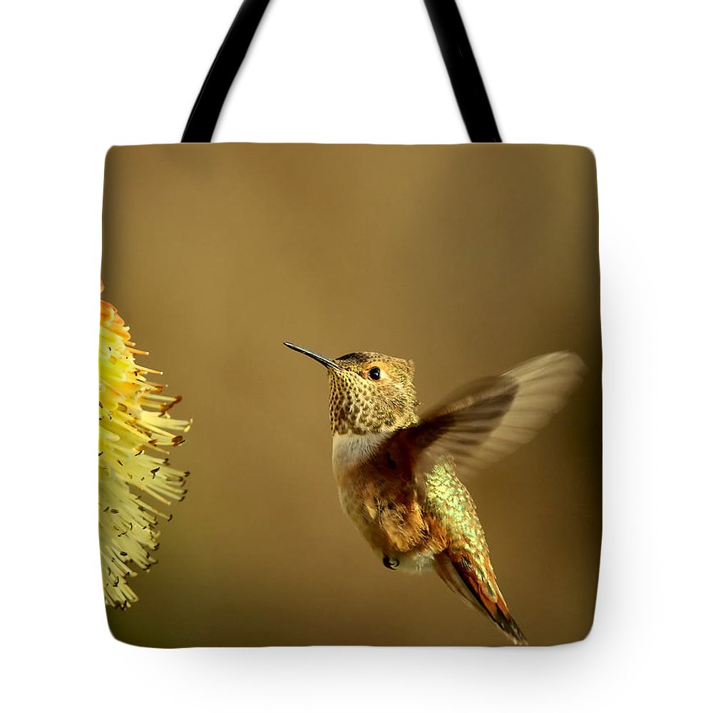 Hummingbird Tote Bag featuring the photograph Flight Of The Hummer by Mike Dawson