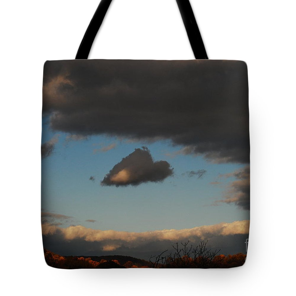 Heart Tote Bag featuring the photograph Floating Heart by Lori Tambakis