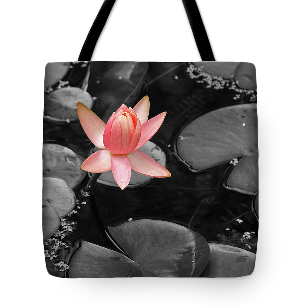 Lily Pond Water Lily Pnk Green Photograph Photography Digital Art Tote Bag featuring the photograph Floating Pink by Shari Jardina