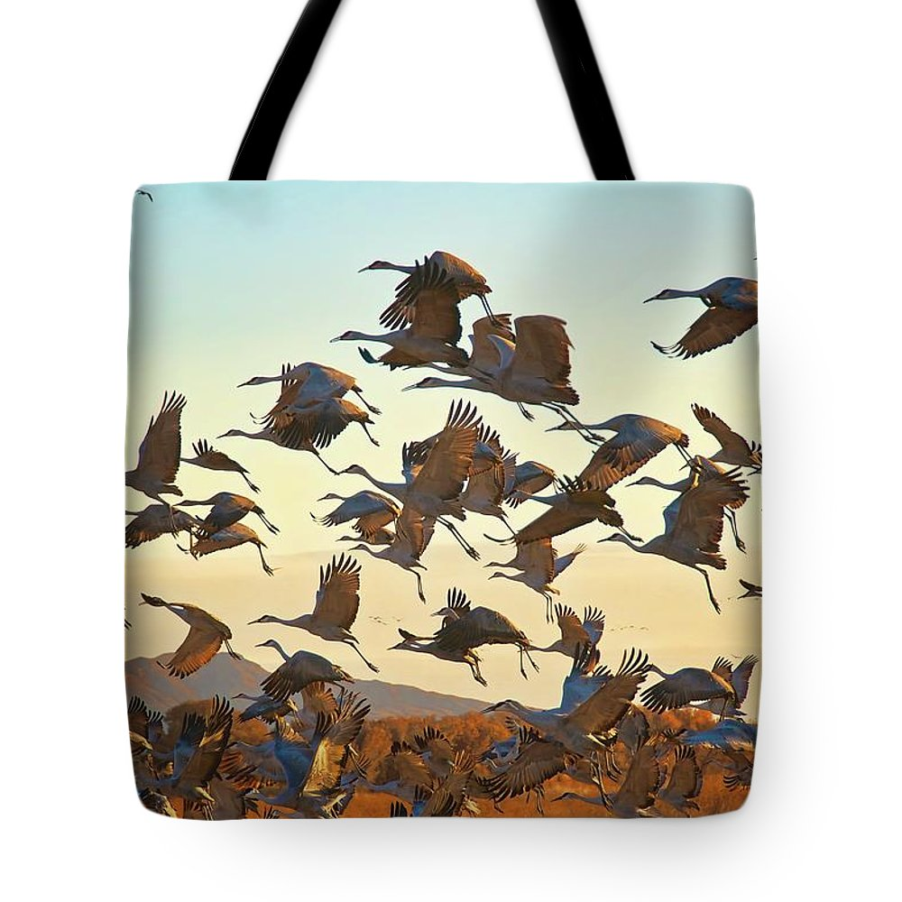 Nature Tote Bag featuring the photograph Liftoff, Sandhill Cranes by Zayne Diamond Photographic