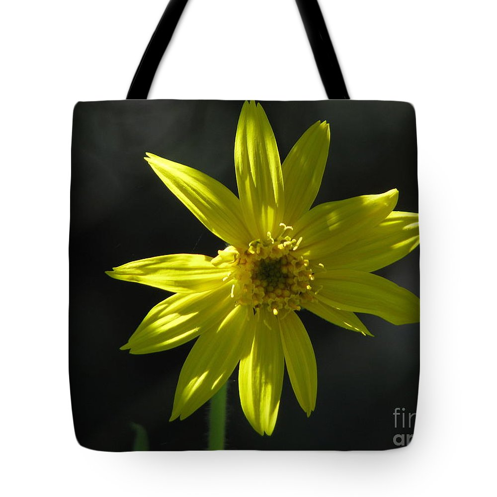 Light Tote Bag featuring the photograph Floral by Amanda Barcon