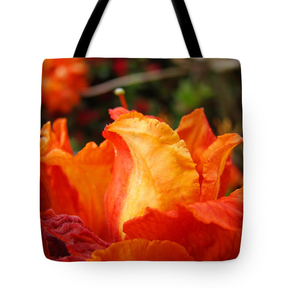 Rhodies Tote Bag featuring the photograph Floral Art Prints Orange Rhodies Rhododendrons Baslee Troutman by Baslee Troutman