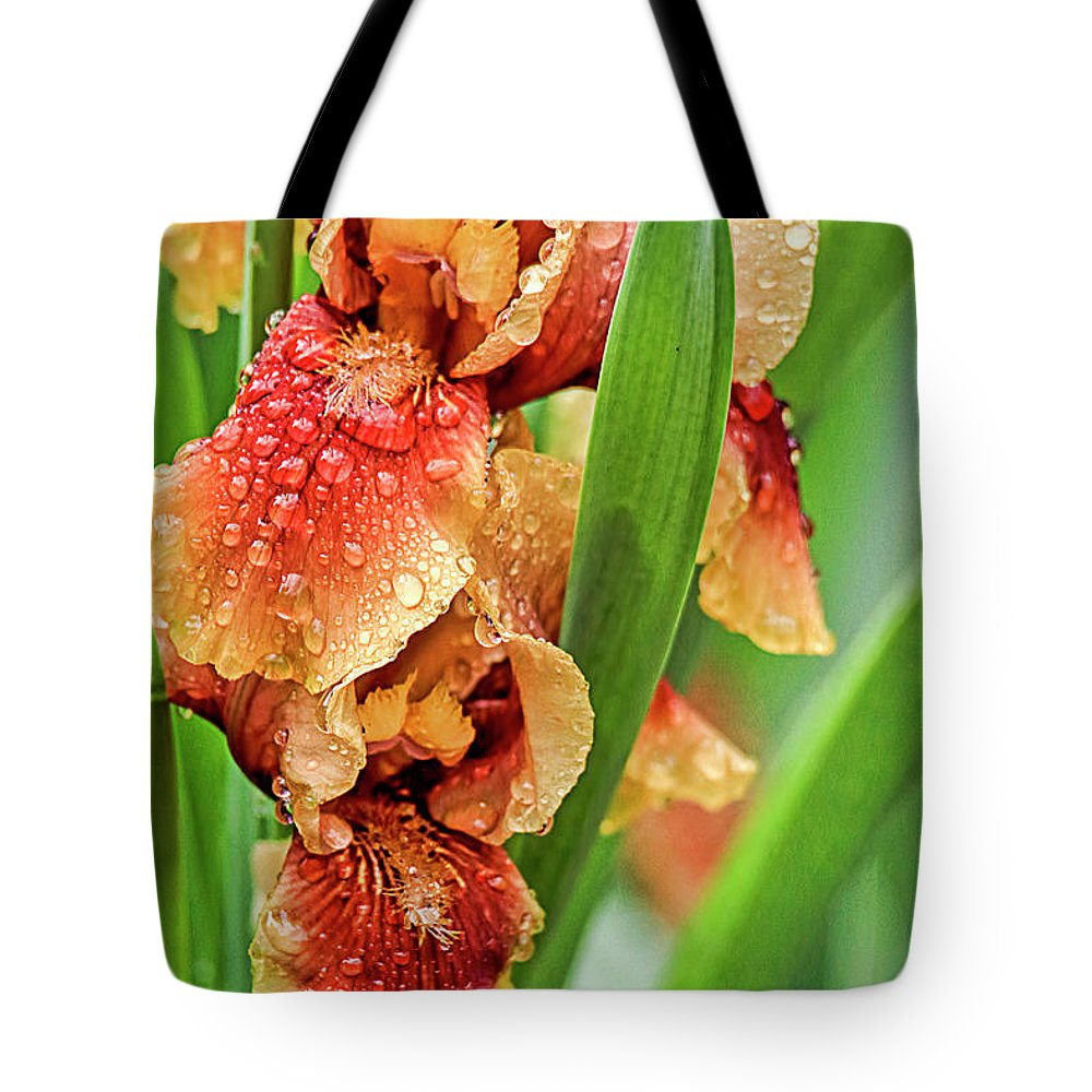 Recent Tote Bag featuring the photograph Floral Bearded Iris With Rain Drops by Geraldine Scull