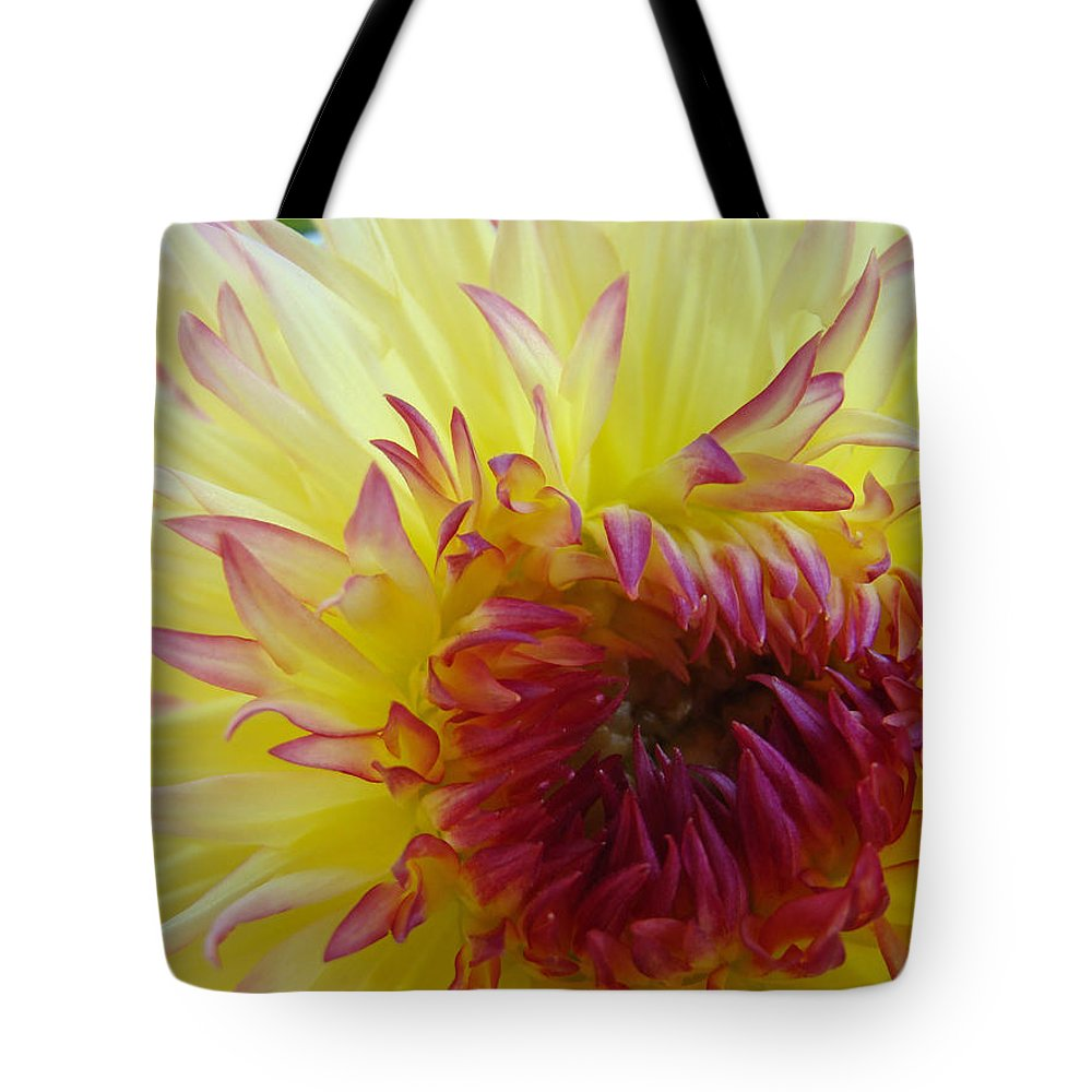 Dahlia Tote Bag featuring the photograph Floral Fine Art Dahlia Flower Yellow Red Prints Baslee Troutman by Baslee Troutman