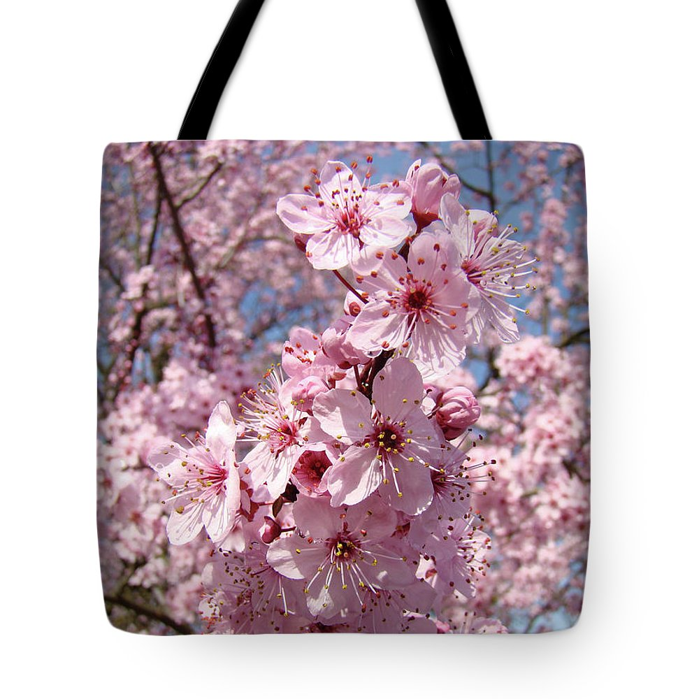 Blossom Tote Bag featuring the photograph Floral Spring Art Pink Blossoms Canvas Baslee Troutman by Baslee Troutman