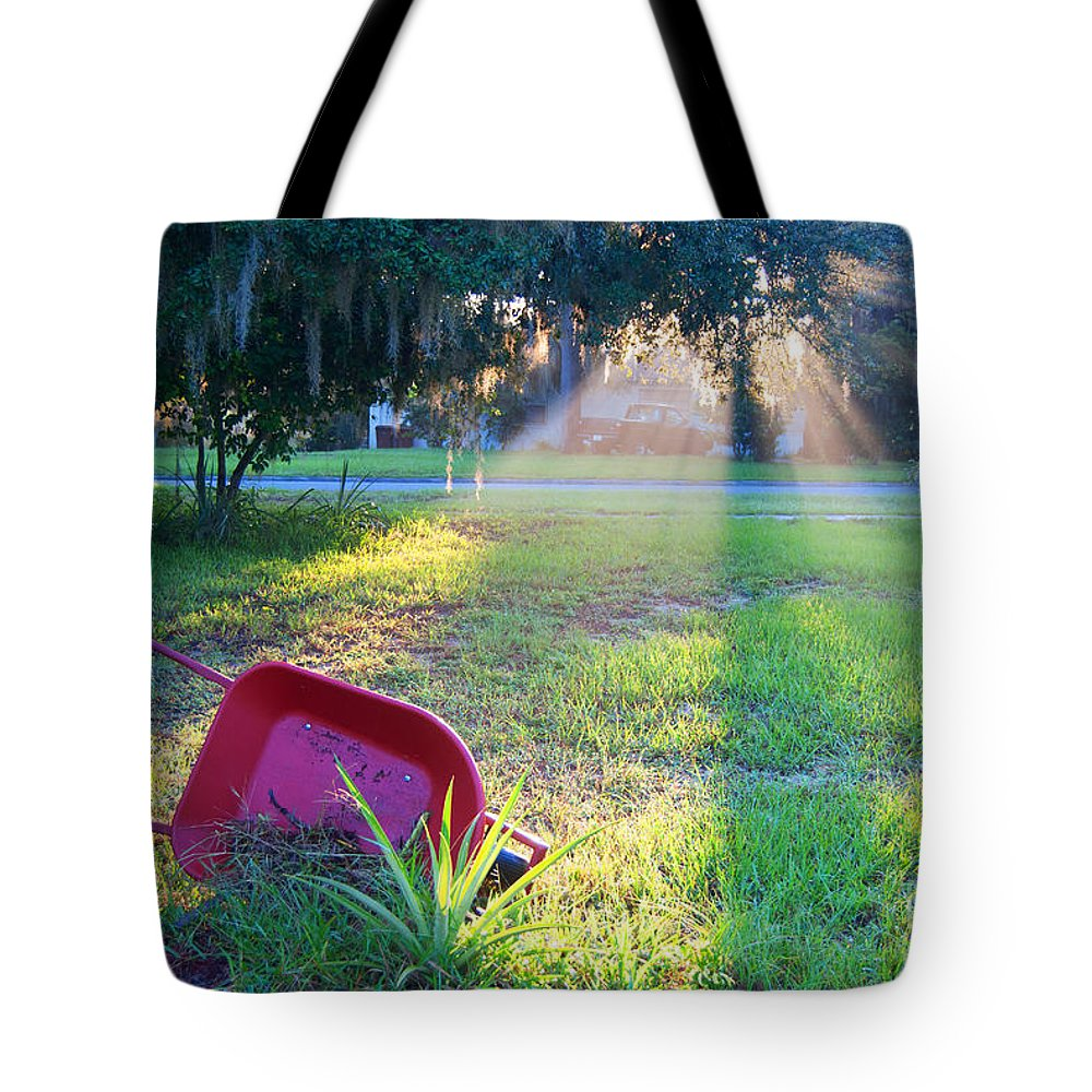 Florida Tote Bag featuring the photograph Florida Home by George D Gordon III