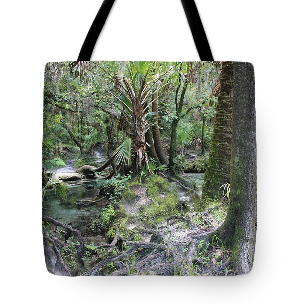 Florida Landscape Tote Bag featuring the photograph Florida Landscape - Lithia Springs by Carol Groenen