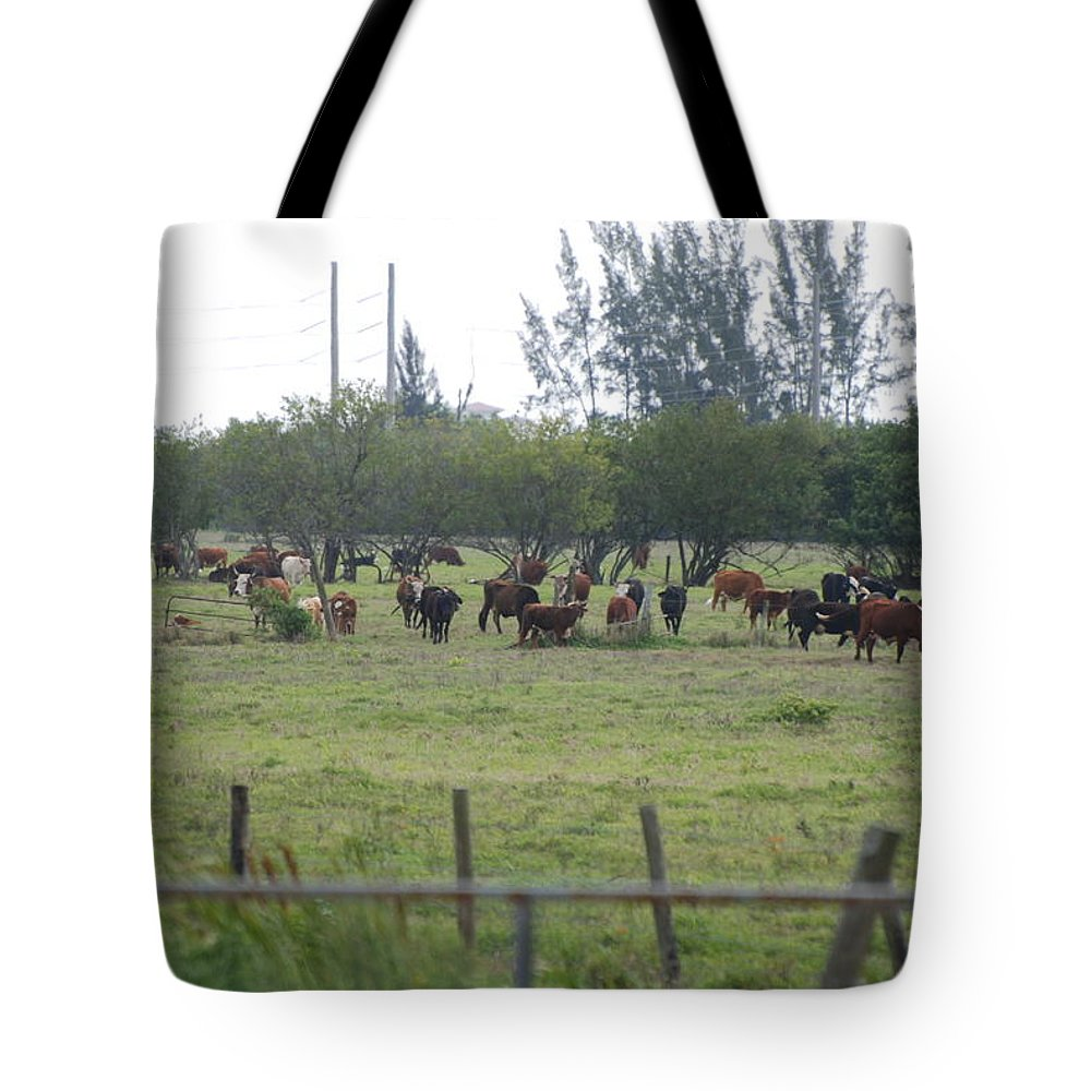 Trees Tote Bag featuring the photograph Florida Ranch by Rob Hans