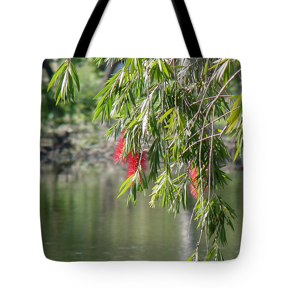 Green Tote Bag featuring the photograph Florida Reflections by Shirley Heyn