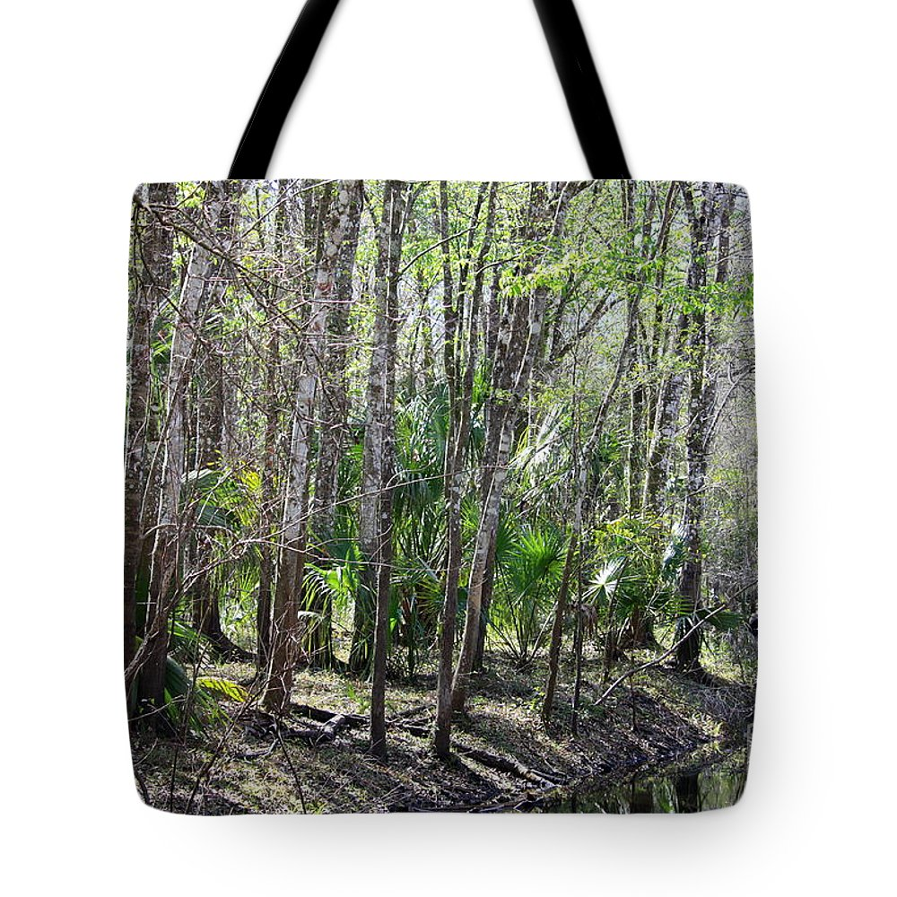 Florida Landscape Tote Bag featuring the photograph Florida Riverbank by Carol Groenen